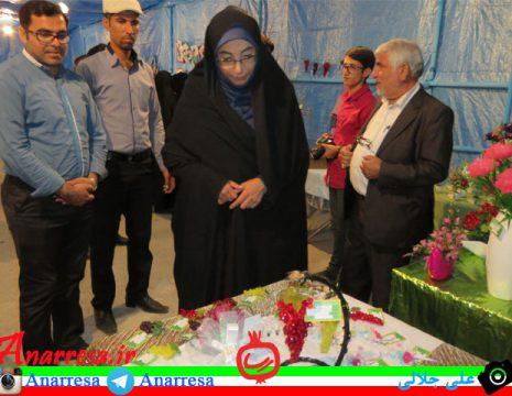 <h5>بازدید از نمایشگاه صنایع دستی و غذاهای سنتی انارستان</h5><br><div> ... </div>