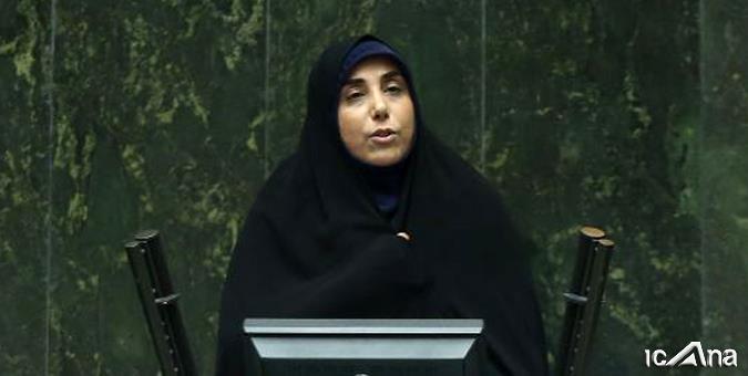 انتقاد دکتر سکینه الماسی از سخنان وزیر کشور درباره حوزه انتخابی خود